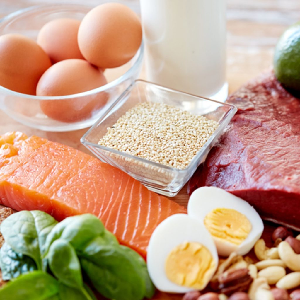 метаболизъм - протеини